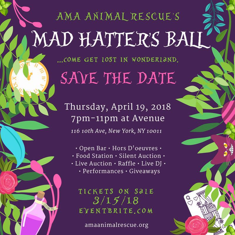 """da2390c69f0 AMA Animal Rescue invited you to tumble down the rabbit hole with us for  our 3rd Annual Gala. Thank you for coming and getting lost in Wonderland  for a """"Tea ..."""